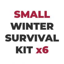 Small Winter Survival Case x6